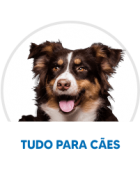 Top 20 Cães