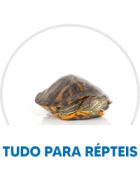 FAVORITOS RÉPTEIS
