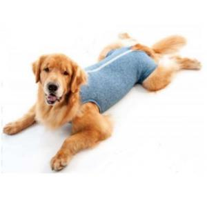 Roupa Pós Cirurgica Dry Confort Pet Med N 02