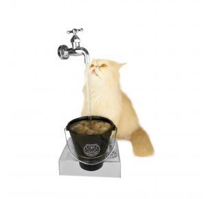 Bebedouro Torneira Magicat Black Cat My Pet