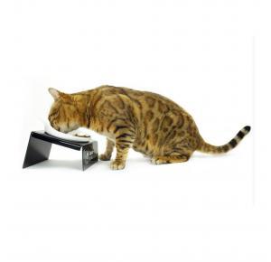 Comedouro para Gatos Snack Cat Preto Cat My Pet
