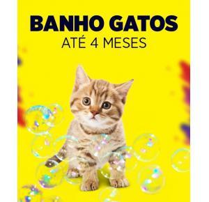 Banho para gatos até 4 meses
