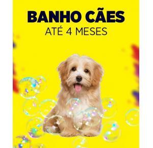 Banho para cães até 4 meses