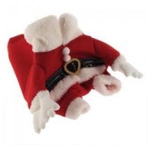Roupa Papai Noel Para Cães Tamanho- P