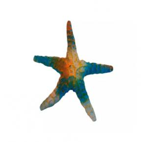 Enfeite Para Aquário Estrela Do Mar Lester